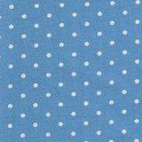 2987-13 Bunny Hill light blue dot_