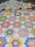CRP0031 Hexagonnen_