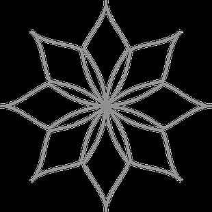 Spin-e-fex 5 Set (5pcs) Low Shank