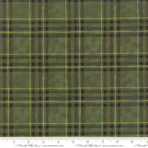 19913-15B ruitstof flanel Groen Explore by Deb Strain