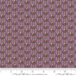 31605-18 Nancy's Needle 1850-1880 paars