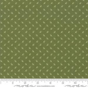 31606-14 Nancy's Needle 1850-1880 groen