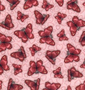 6201-632 Truly Gorjuss vlinders