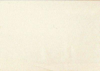 764-Q2 Makower creme met witte blaadjes print