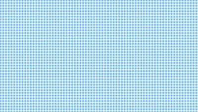 920-B4 New Gingham Light Blue